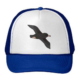 Flesh-footed Shearwater flying Hat