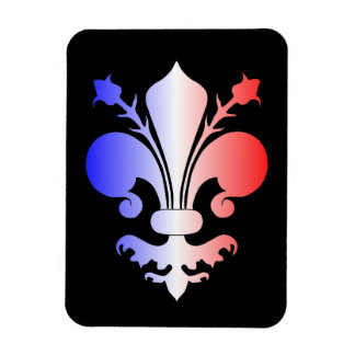 Fleur de lis in blue, white, and red rectangular photo magnet