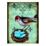 Fleur Di Lis Bird Nest Shabby Chic Postcard