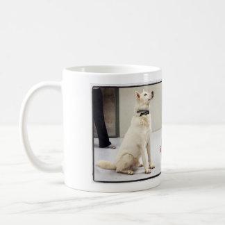Fleury's Cup
