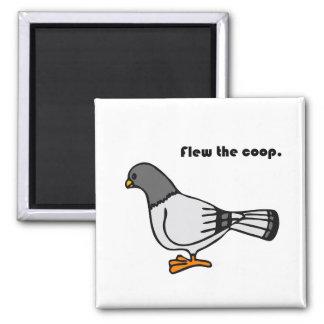 Flew the Coop Gray Pigeon Cartoon Magnet