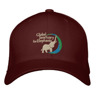Flex fit wool cap in burgundy