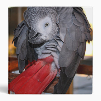 Flexible Congo African Grey Parrot with Red Tail Binder