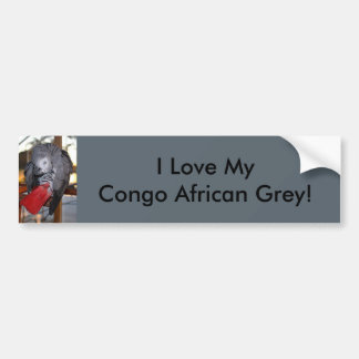 Flexible Congo African Grey Parrot with Red Tail Bumper Sticker