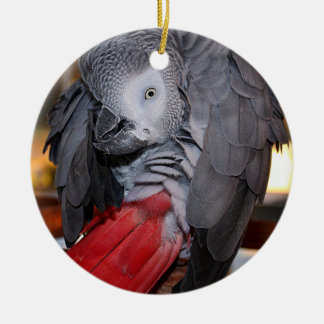 Flexible Congo African Grey Parrot with Red Tail Ceramic Ornament