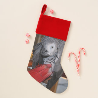 Flexible Congo African Grey Parrot with Red Tail Christmas Stocking