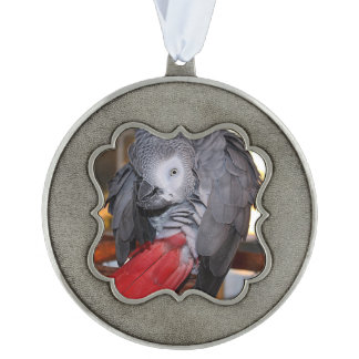 Flexible Congo African Grey Parrot with Red Tail Pewter Ornament
