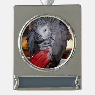 Flexible Congo African Grey Parrot with Red Tail Silver Plated Banner Ornament