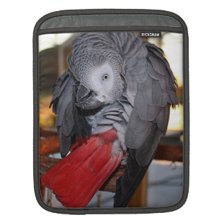 Flexible Congo African Grey Parrot with Red Tail Sleeve For iPads