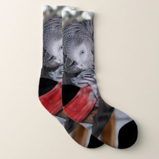 Flexible Congo African Grey Parrot with Red Tail Socks