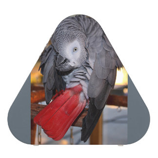 Flexible Congo African Grey Parrot with Red Tail Speaker