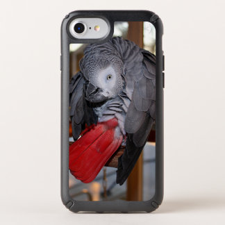 Flexible Congo African Grey Parrot with Red Tail Speck iPhone Case