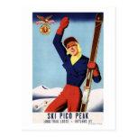 Flexible Flyer Pin-Up Skiing Girl Postcard