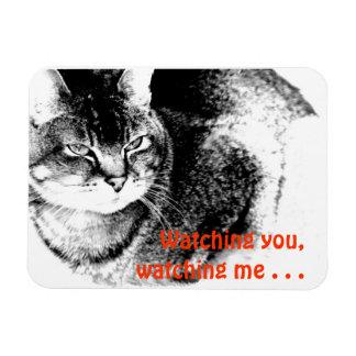 Flexible Fridge Magnet - Watchful Cat!