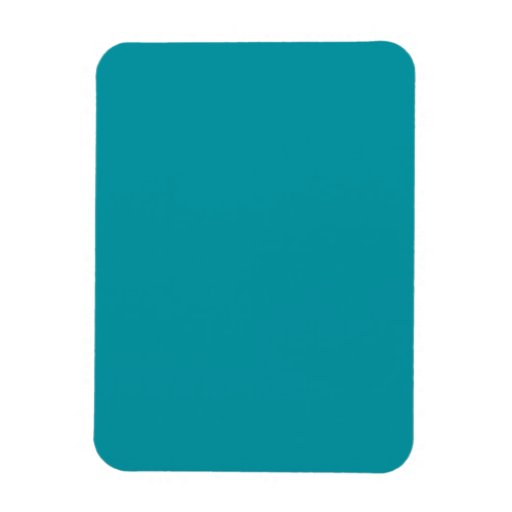 Flexible Magnet with   Teal Background