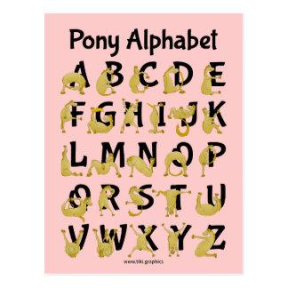 Flexible Pony | Alphabet Chart Postcard