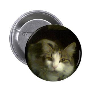 Flick 7 pinback button