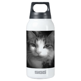 Flick the cat insulated water bottle