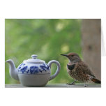 Flicker and Teapot Greeting Card