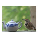 Flicker and Teapot Postcard