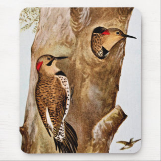 Flicker Birds Vintage Picture Mouse Pad