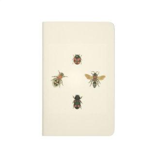 Flies and Beetles by Vision Studio Journal