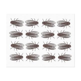 Flies Pattern - Antique Bug Engraving Canvas Print