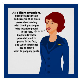 Flight Attendant Woes Poster