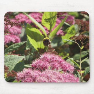 Flight of the Bumblebee Mouse Pad