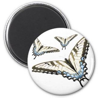 Flight of the Butterfly Fridge Magnet