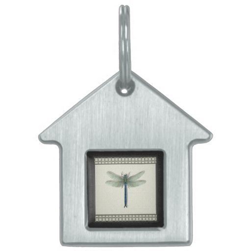 Flight of the Dragonfly Pet Tag