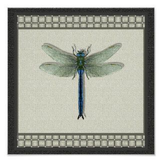 Flight of the Dragonfly Print