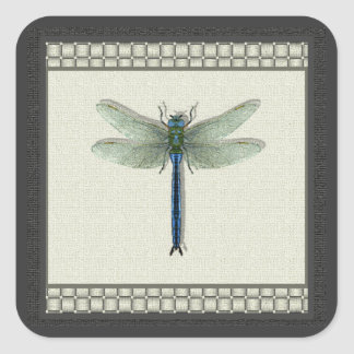 Flight of the Dragonfly Square Sticker