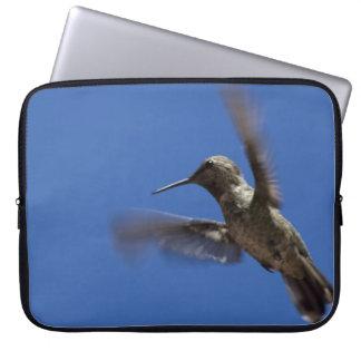 Flight of the Hummingbird Computer Sleeves