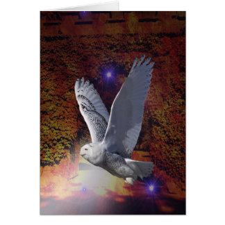 Flight of the Night Owl. Card