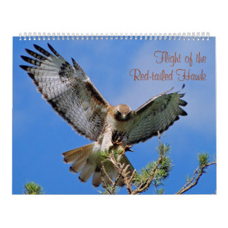 Flight of the Red Hawk Calendar