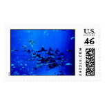Flight of the Stingrays Postage Stamp