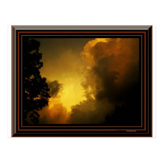 Flight of the Storm Postcard