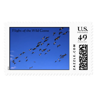 Flight of the Wild Goose Stamps