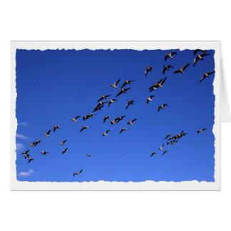 Flight of the Wild Goose - torn edges version Card