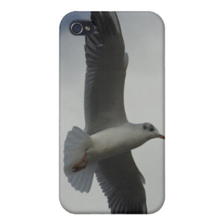 Flight over Louvre iPhone 4/4S Cases