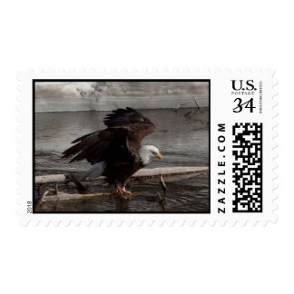 Flight Preparations Postage Stamp