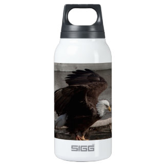 Flight Preparations Thermos Water Bottle