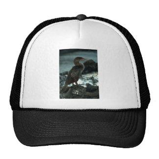 Flightless Cormorant Trucker Hat