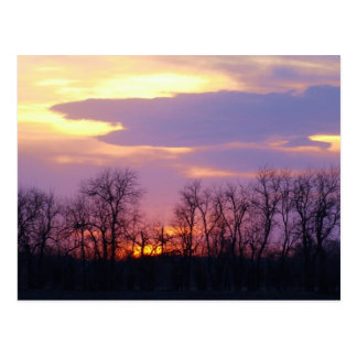 Flint Hills sunset Postcard