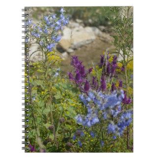 Flint Hills wildflowers notebook