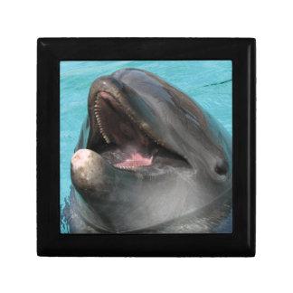 Flipper Gift Box