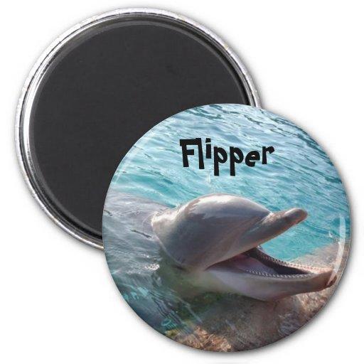 Flipper Magnets