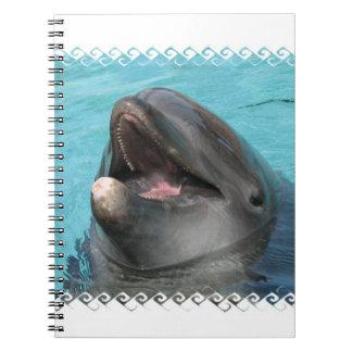 Flipper  Notebook