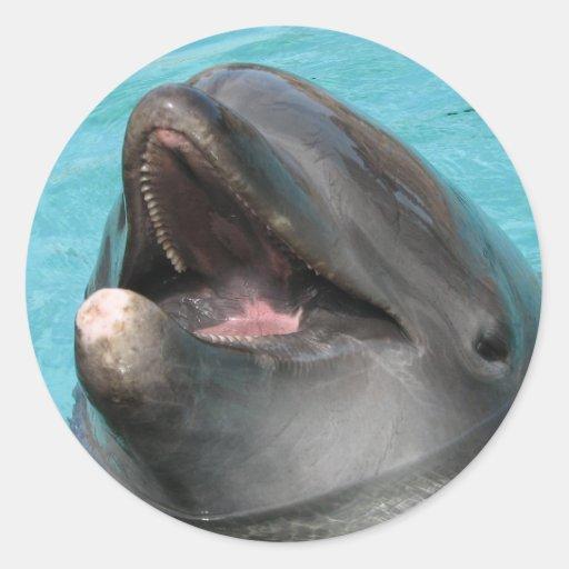 Flipper Sticker